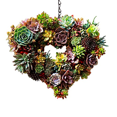 Danmu Rustic Iron Wire Wreath Frame Succulent Pot Iron Hanging Planter Plant Holder (Plants are Not Included) (Style 4)