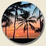1 X Palms, Sunset on the Beach Single Auto Coaster