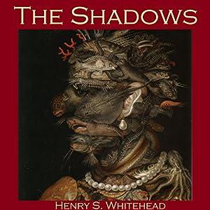 The Shadows Audiobook