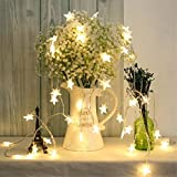 Timewanderer Star Warm White Led String Fairy Light AA Battery Operated Bright LED Lights Decorative Lights Clear Wire for Christmas DIY (5M 50 Stars)