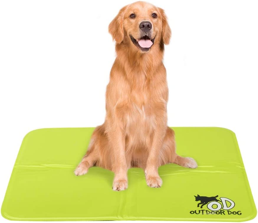 Dog relaxing on a cooling mat