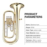 ammoon B Flat Baritone Horn Brass Gold Lacquer