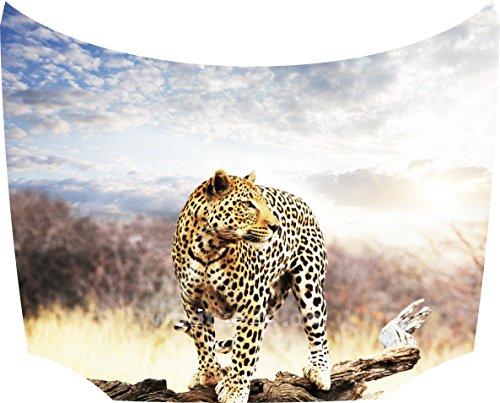 Bonnet Sticker Leopard: