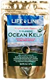 Life Line Pet Nutrition Organic Ocean Kelp Supplement for Skin & Coat, Digestion, Teeth & Gums in Dogs & Cats, 8-Ounce