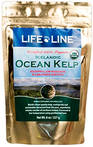 ion Organic Ocean Kelp Supplement for Skin & Coat, Digestion, Teeth & Gums in Dogs & Cats, 8-Ounce ()