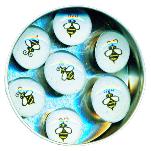 Bumble Bee Refrigerator Magnets - 4