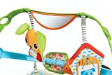 Tiny Love Spin n Kick Discovery Arch Toy