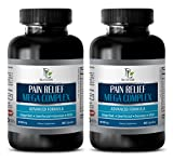 pain away - PAIN RELIEF MEGA COMPLEX 610MG - green tea appetite suppressant - 2 Bottles (120 Capsules)