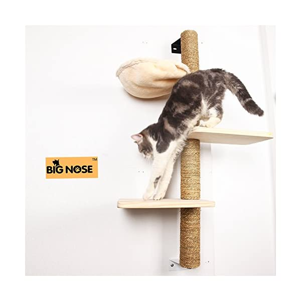 BIG NOSE- Wall Mounted Cat Scratching Post Multi Level Cat Shelves with Solid Wood Steps and Sunny Seat Hammock … 2
