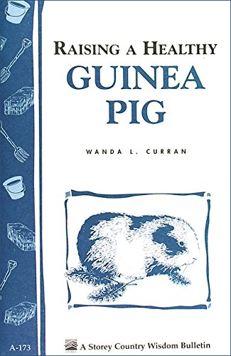 (Raising a Healthy Guinea Pig: Storey's Country Wisdom Bulletin A-173 (Storey Country Wisdom Bulletin))
