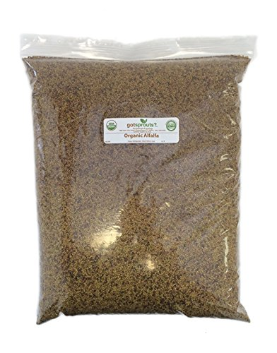 20 LBS Organic Alfalfa Seeds by Got Sprouts?