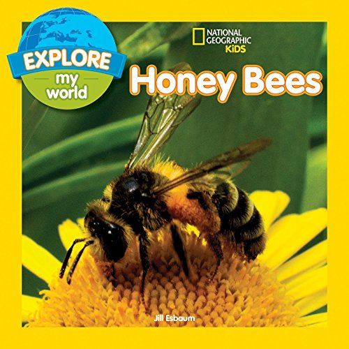Explore My World: Honey Bees
