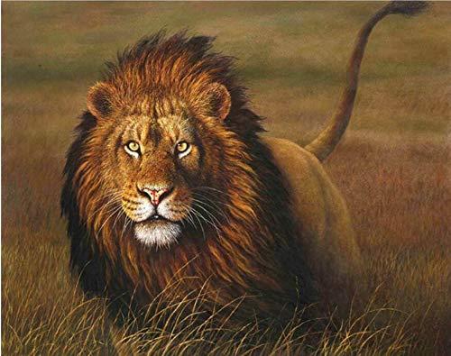 Wiesen-Tier-Löwe DIY Malen nach Zahlen handgemaltes Ölgemälde Tiere malen nach Zahlen für Wohnzimmer Artwork Mit Rahmen 40x50cm B07NWTPCYB   Zu einem niedrigeren Preis