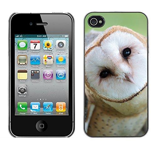 Premio Sottile Slim Cassa Custodia Case Cover Shell // V00002138 visage Owl // Apple iPhone 4 4S 4G