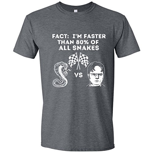 Gray Snake (Feisty and Fabulous Dwight Shirt, Fact, Faster Than Snakes, The Office Tshirt, Small, Gray)