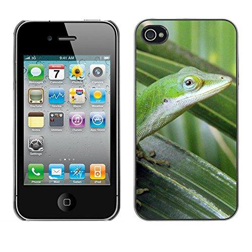 Premio Sottile Slim Cassa Custodia Case Cover Shell // F00011644 lézard // Apple iPhone 4 4S 4G