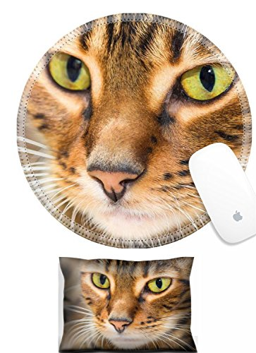 (Luxlady Mouse Wrist Rest and Round Mouse Wrist Set IMAGE: 44415157 Portrait of cat brown mackerel tabby color close up Shallow depth of field)