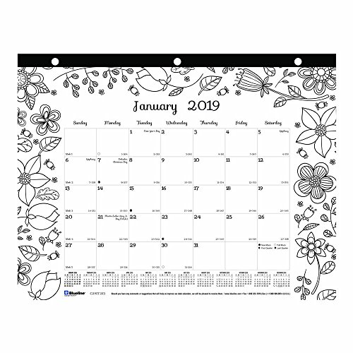 Blueline 2019 DoodlePlan Monthly Coloring Desk Pad, Garden designs, January to December, 11 x 8.5 inches (C2917213-19)