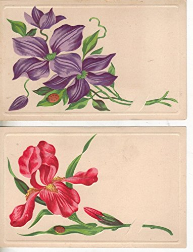 Pair of pretty flowers with ladybugs antique postcards Z3742