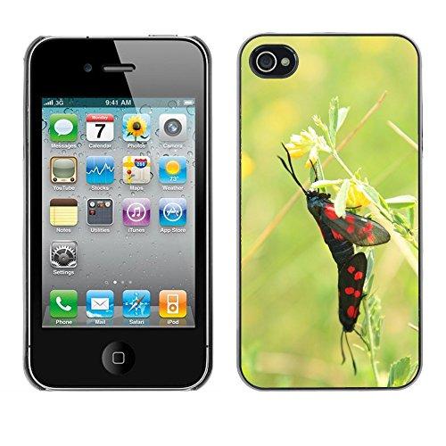 Bild Hart Handy Schwarz Schutz Case Cover Schale Etui // M00135655 Black Butterflies Schmetterling // Apple iPhone 4 4S 4G