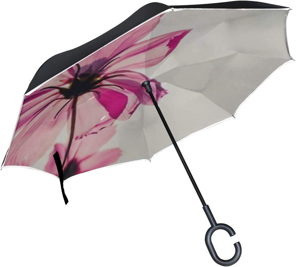 Double Layer Inverted Inverted Umbrella Is Light And Sturdy Cosmos Flowers Blooming Sunset Reverse Umbrella And Windproof Umbrella Edge Night Reflect