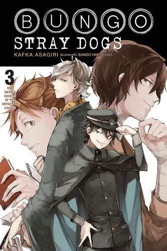 Bungo Stray Dogs, Vol. 3 (light novel): The Untold Origins of the Detective Agency (Bungo Stray Dogs (light novel) (3))