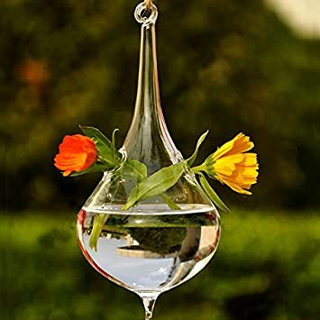 Amazon Money Coming Shop Clear Water Drop Glass Hanging Vase