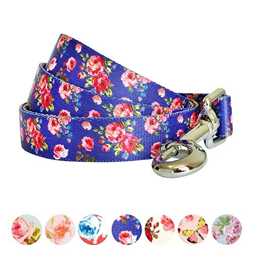 "Blueberry Pet Durable Spring Scent Inspired Rose Print Irish Blue Dog Leash 5 ft x 5/8"", Small, Leashes for Dogs"