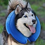 MorTime Protective Inflatable Collar for Dogs and Cats Adjustable Soft Pet Recovery Collar - Does Not Block Vision 16