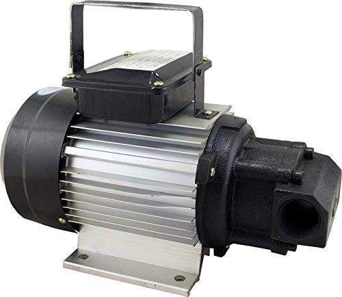 Duda Diesel YTG-70-1100w Motor Oil Pump, 110V/120V, 1100W, Wvo Wmo Grease Vegetable Lubricating, 18.5 GPM Maximum Flow Rate, Stainless Steel by Duda Diesel