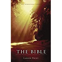 NIV, Holy Bible, Larger Print