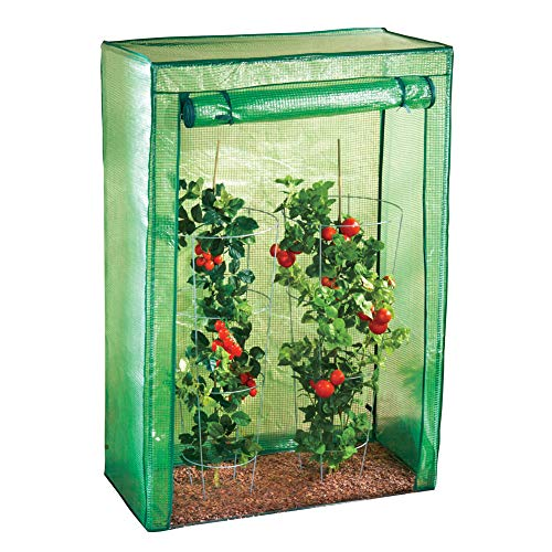 Collections Etc Plant Protecting Portable Greenhouse - Weatherproof to Preserve Garden and Vegetables ()