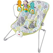 Fisher-Price Baby's Bouncer - Green Cheveron