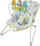 Fisher-Price Baby's Bouncer, Green/Blue/Grey For Sale