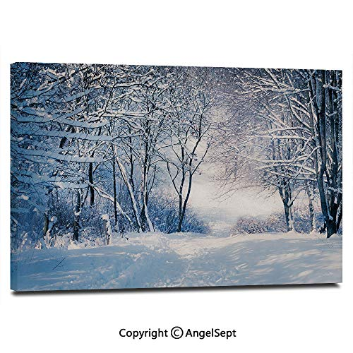Modern Salon Theme Mural Alley in Snowy Forest Cold Freezing Weather Rural Nature Outdoors Woodland Decorative Painting Canvas Wall Art for Home Decor 24x36inches, ()