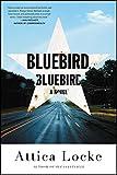 Product picture for Bluebird, Bluebirdby Attica Locke
