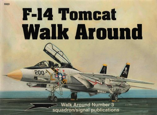 F-14 Tomcat  Walk Around  (Walk Around No. 3) for sale  Delivered anywhere in USA