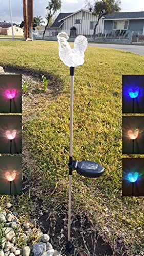 Set of 2 Clear Acrylic Rooster Solar Yard Stick Color Change Light (Light Rooster)
