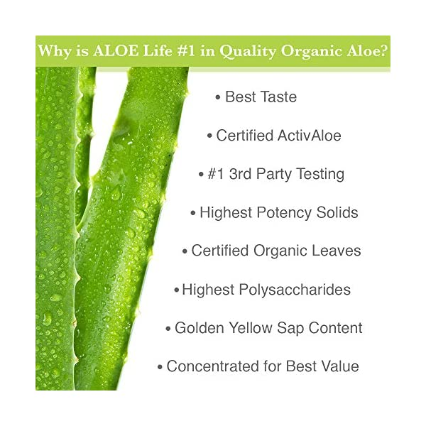 Aloe Life – Aloe Gold Whole Leaf Juice Concentrate, Supports Occasional Indigestion, Bloating, Regularity, Energy and Optimum Health Aloe Vera [tag]