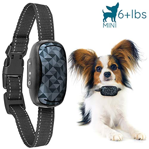 GoodBoy Small Rechargeable Dog