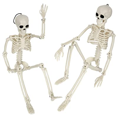 Halloween Skeletons Posable Full Body Posable Joints Skeletons for Halloween Props Decoration Graveyard Haunted House Cosplay Party Favors Adult Human Skeletons Skull Scientific Bones Models: Toys & Games