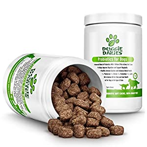 Doggie Dailies Probiotics for Dogs, 225 Soft Chews, Advanced Dog Probiotics with Prebiotics, Relieves Dog Diarrhea, Improves Digestion, Enhances Immune System, Improves Overall Health 3