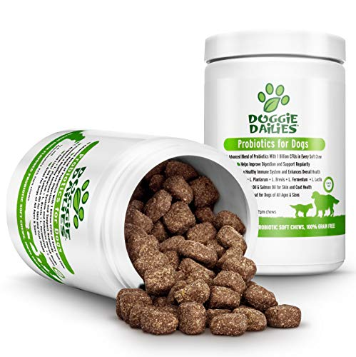 - Doggie Dailies Probiotics for Dogs, 225 Soft Chews, Advanced Dog Probiotics with Prebiotics, Relieves Dog Diarrhea, Improves Digestion, Enhances Immune System, Improves Overall Health, Made in the USA