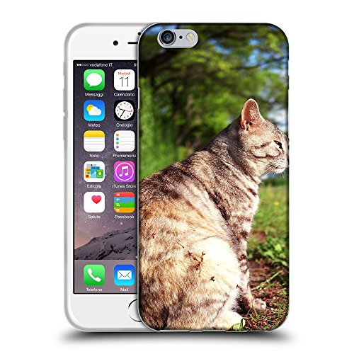 Just Phone Cases Coque de Protection TPU Silicone Case pour // V00004306 graisse chat se trouve dans le jardin // Apple iPhone 6 6S 6G PLUS 5.5""