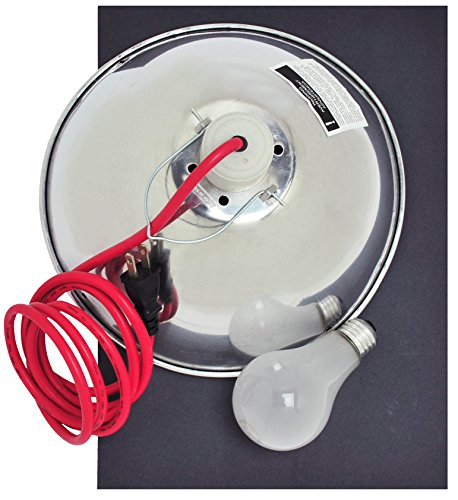 Speedball 045060 45060 Light Kit by Speedball