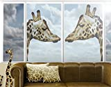 Window Mural Giraffes In Love window sticker window film window tattoo glass sticker window art window décor window decoration Size: 56.7 x 75.6 inches