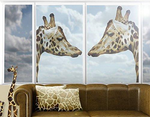 Window Mural Giraffes In Love window sticker window film window tattoo glass sticker window art window décor window decoration Size: 56.7 x 75.6 inches by PPS. Imaging