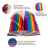24 Pocket Expanding File Folder, Multicolored A4