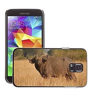 Etui Housse Coque de Protection Cover Rigide pour // M00108612 Buffalo Mamífero Safari Uganda grande // Samsung Galaxy S5 S V SV i9600 (Not Fits S5 ACTIVE)
