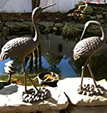 Pair of Large Iron Egrets ~ Egret Garden Statue ~ Rust Review